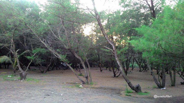Pantai Keburuhan Purworejo